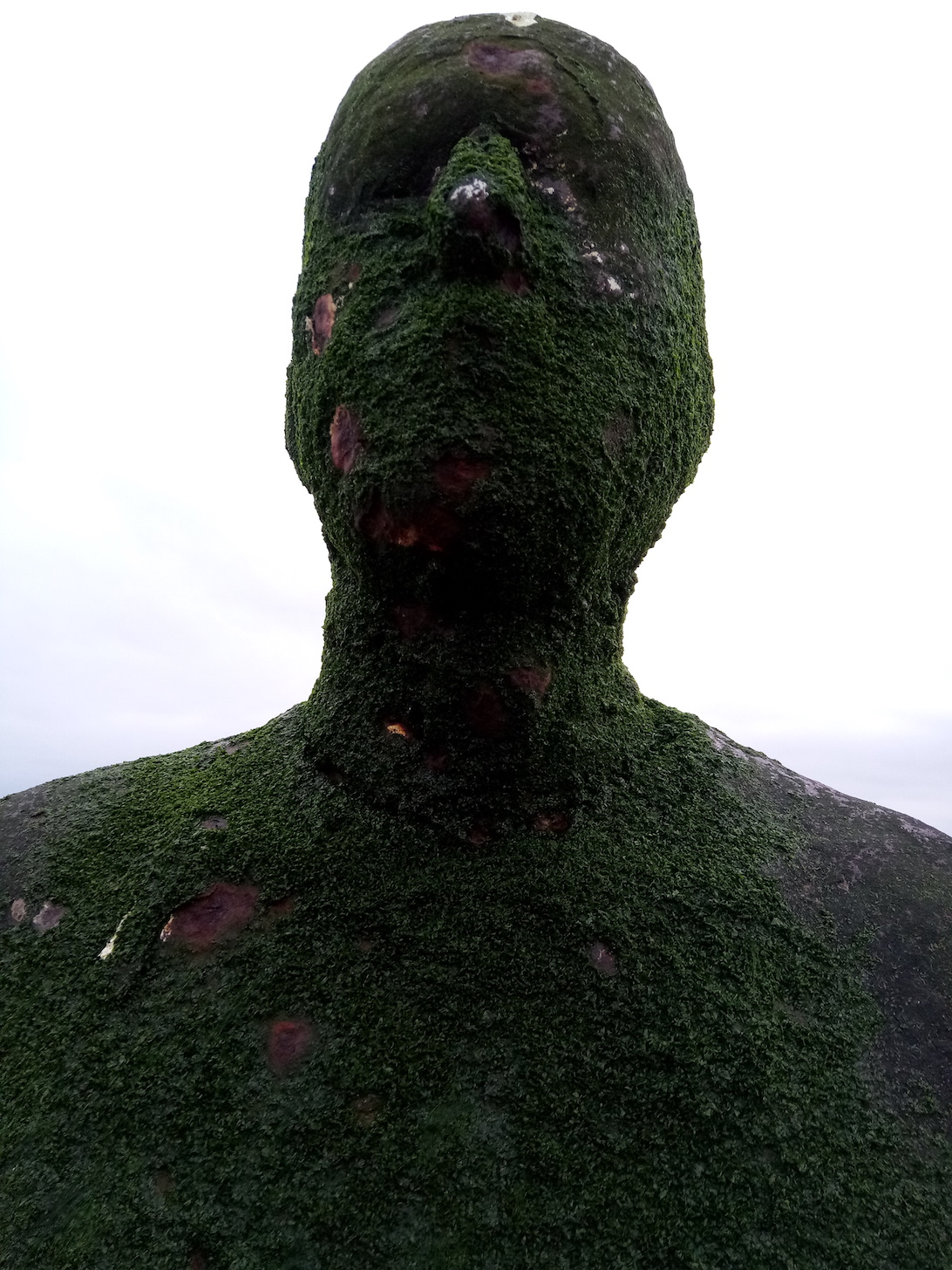 Green Gormley